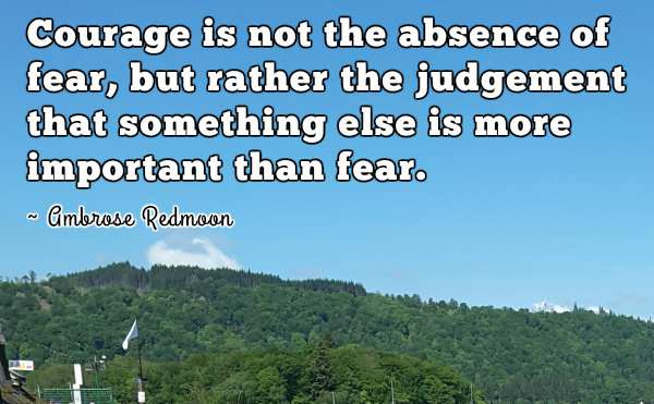 Quotation by Ambrose Redmoon.