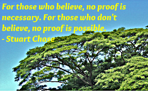 A belief quote by Stuart Chase.