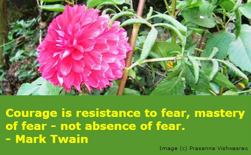 Quotation by Mark Twain.