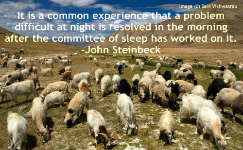 An entertaining quote by John Steinbeck on the problem solving properties of sleep.