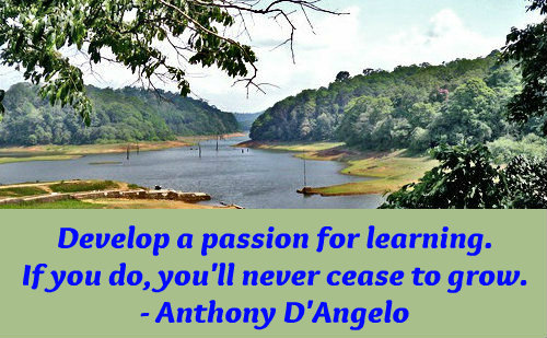 An education quote by Anthony D'Angelo.