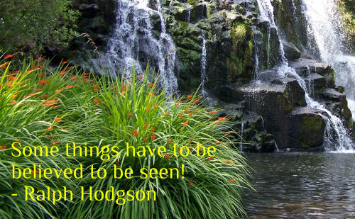 A belief quote by Ralph Hodgson.