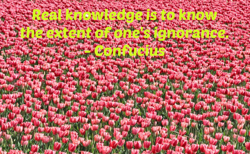 A knowledge quote by Confucius.