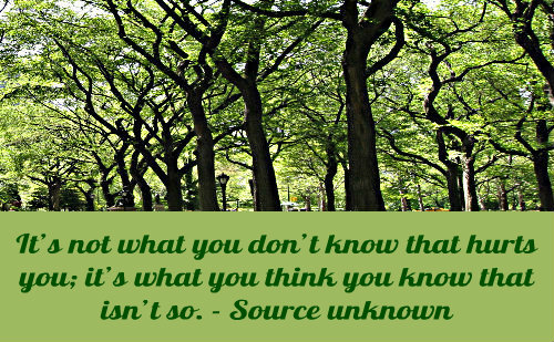 A beautiful quote on knowledge.