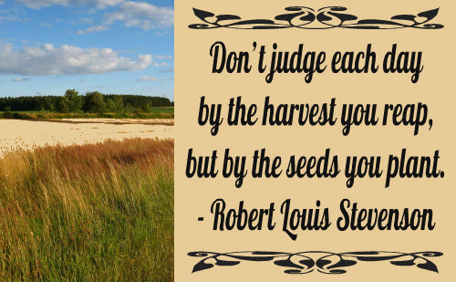 An excellent quote by Robert Louis Stevenson.